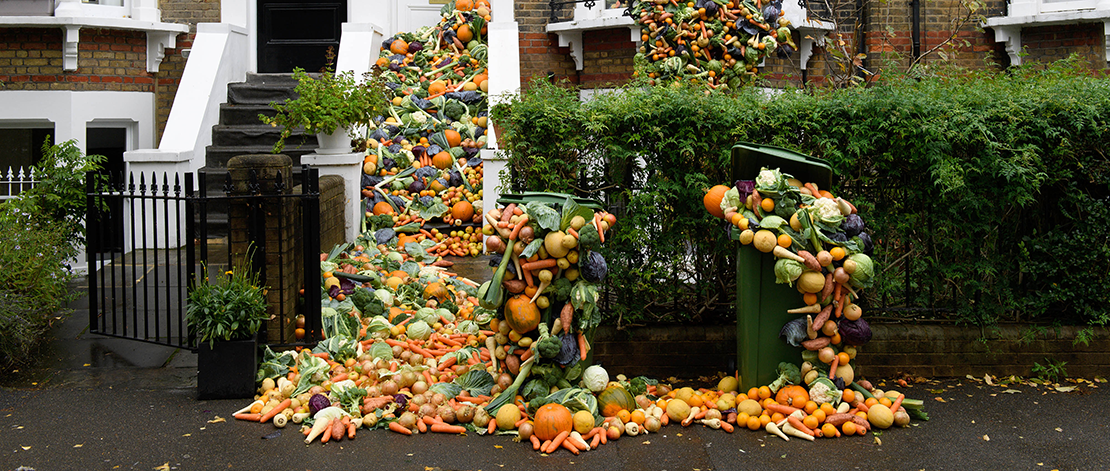 Food waste featured image
