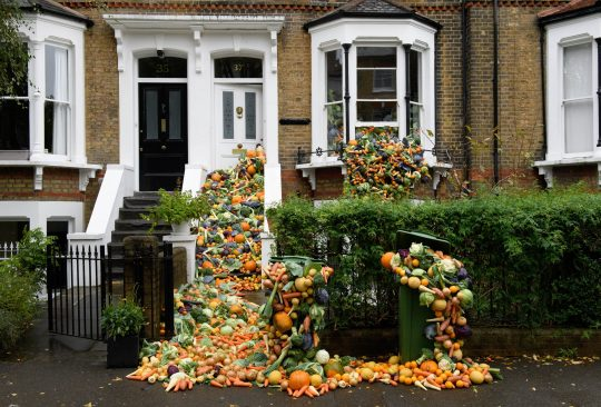 TRiFOCAL food waste campaign: Lots of fruit and vegetables are tumbling down the steps of a Victorian terraced house, out of its windows into the front garden and street, to show how we can reduce food waste to tackle the climate emergency